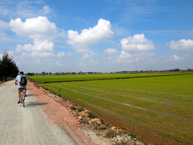 A tourist takes a bike ride in the country